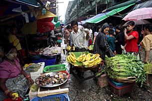 bazaar_market_poverty_305_z.png