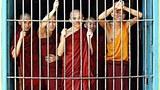 monks_bar_305px.jpg