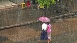 rain_heavy_305px.jpg