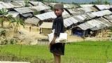rohingya_camp_305px