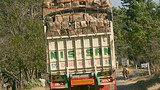 truck_china_melon_305px.jpg