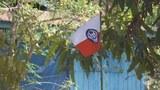 aa-flag-622