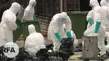 H1N1-622.jpg