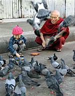 bird_human_150px.jpg