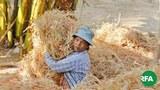 farmer-622.jpg