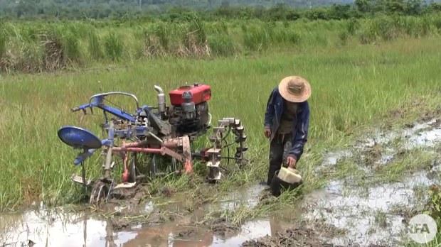 kachin-farmer-622.jpg