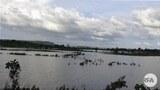 flooding-622.jpg