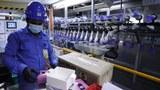 မလေးရှားက မြန်မာစက်ရုံလုပ်သားအားလုံး ဗိုင်းရပ်စ် ရှိ၊ မရှိ စစ်ရမည်