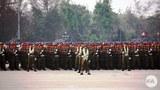 army-622.jpg