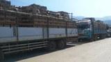 truck-muse-622.jpg