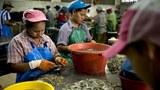 myanmar-workers-in-thai-622.jpg