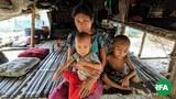 rathedaung-refugees-622.jpg