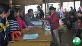 kachin-refugees-622.jpg