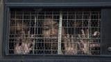 မြန်မာမှာ လူ့အခွင့်အရေး ချိုးဖောက်မှုတွေ ဆက်ရှိနေ