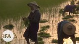 farmers-622.jpg