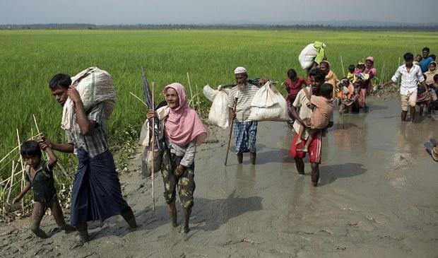 rohingya-622.jpg