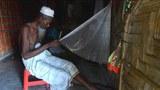 rohingya-old-man-622.jpg
