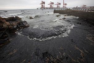 图片4:大连湾海面被厚厚油污污染。(图片由环保组织绿色和平提供)