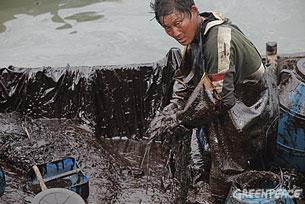 """黑色的油污含有致癌物质,绿色和平便派发口罩保护渔民。(全部相片由""""绿色和平""""提供)"""