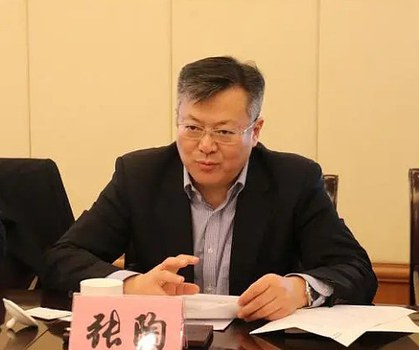 投资控股有限公司党委书记、董事长张陶殴打院士一个月后,在舆论压力下才被刑拘。(资料图片)