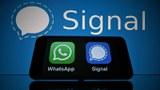 2021年1月11日,隨著WhatsApp要求用戶接受新私隱條款與母公司臉書共享個資,大批原WhatsApp用戶轉移下載另一即時通訊軟件Signal,令Signal在多個國家地區的蘋果和谷歌商店上奪得下載量榜首。