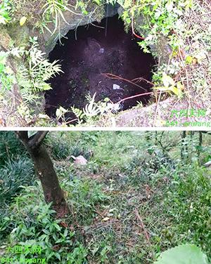 女死者被殺後屍體被丟入沼氣池,而村民龍偉的遺體被發現在小樹林。(照片來自中國天網)