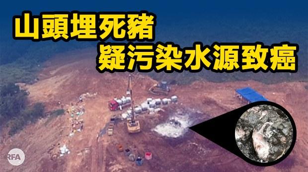 china-disease.jpg