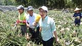 台灣駐美代表蕭美琴吃鳳梨照片,引來網友熱議。