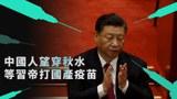 中國人都期待習帝勇敢地站出來表演「接種科興」這一幕大龍鳳。