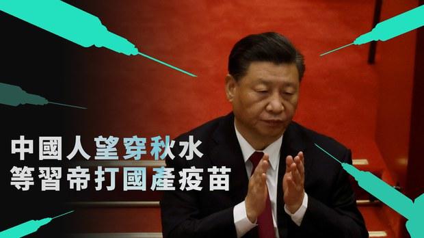 中国人都期待习帝勇敢地站出来表演「接种科兴」这一幕大龙凤。