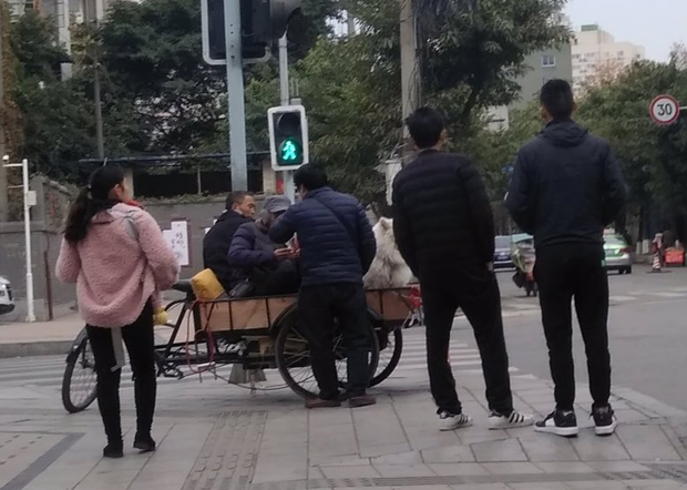 2019年12月26日,成都中院外有很多拿對講機的便衣,疑王怡案在今日開庭。(網友提供)