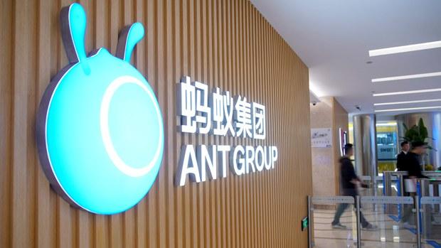 hk-ant