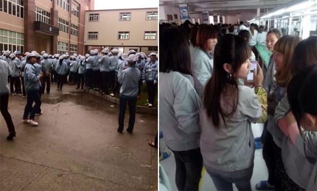 DG-Meizhou-LABOR620.jpg