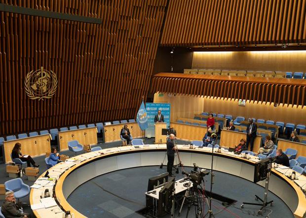 2020年11月9日,世卫大会开幕大会拒绝了美国、欧洲及多个台湾友邦国家提出「以观察员身份邀请台湾参加世界大会」的建议。(世卫组织官网图片)