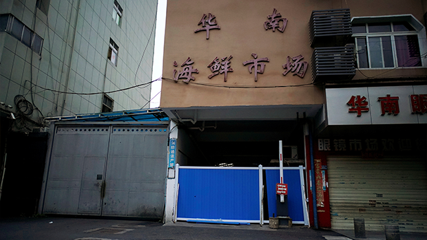 上周最後一刻拒世衛專家組訪華 中方終確認「調查」本周成行