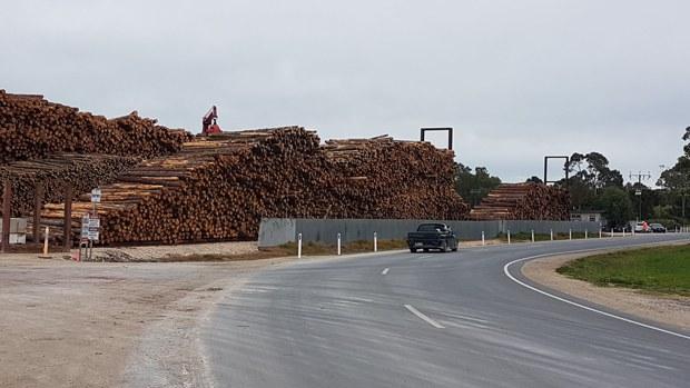 china-wood1