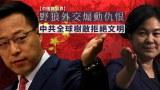 【中國與世界】野狼外交煽動仇恨 中共全球樹敵拒絕文明