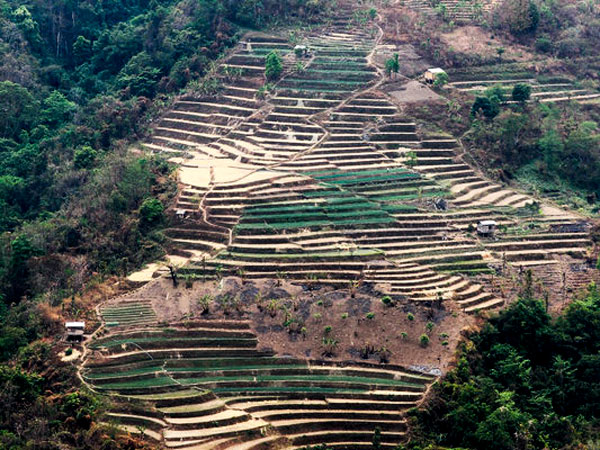 Environmentalists are encouraging Chin farmers to terrace their land in order to preserve the soil, prevent erosion and create permanent fields.