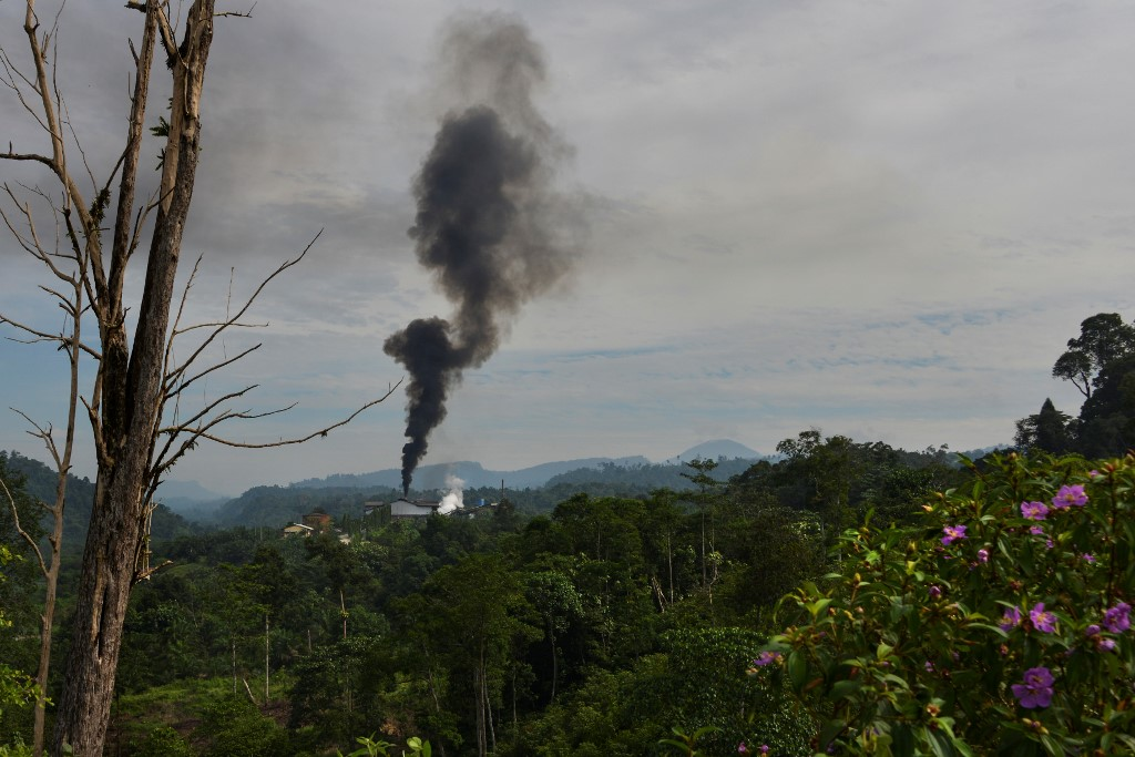 Smoke rises from a palm oil factory in Subulussalam, Indonesia's Aceh province, March 9, 2020.
