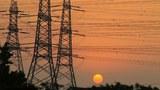 china-electric-power-lines-shanghai-may11-2013.jpg