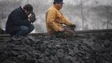 coal2_305
