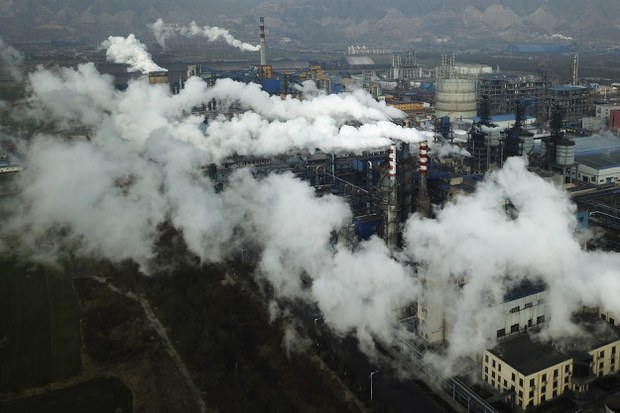 china-hejin-coal-crop.jpg