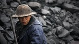 coal_305