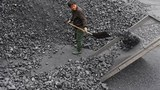 Coal-Worker-305.jpg