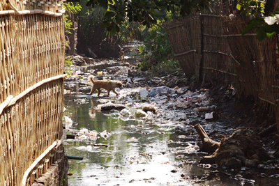 A littered stream in Sittwe, western Burma, is but one example of the country's problem with solid waste, October, 2011. RFA