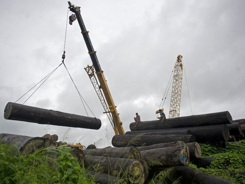 Workers sit on logs being loaded at a holding area along the Yangon river in Yangon, Myanmar, in 2015 file photo.