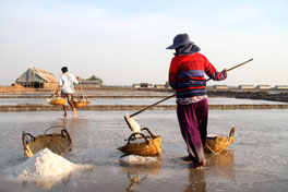 Slideshow: Cambodian Small Sea Salt Farms Face Profits Crisis
