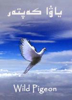 wild-pigeon.jpg
