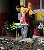 A vendor selling steamed-buns from a roadside stall gathers a bundle of leeks on April 23, 2008 in Beijing. Photo: AFP