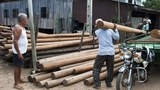 cambodia-timber-transport-nov-2010.jpg